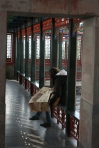 Reading in the summer palace